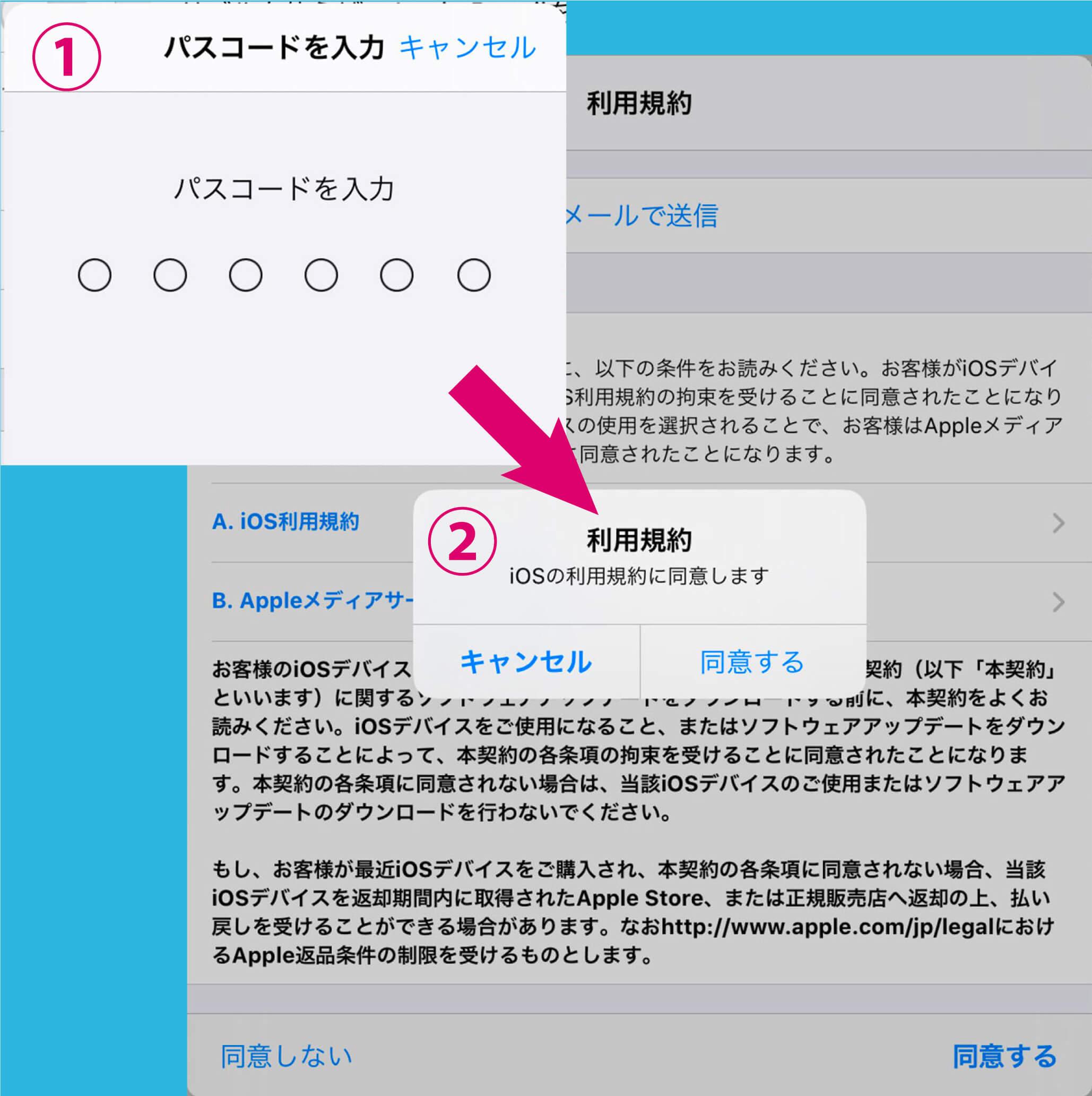 数字のパスワード)を入力する画面が出てくるので、入力し、利用規約に同意する